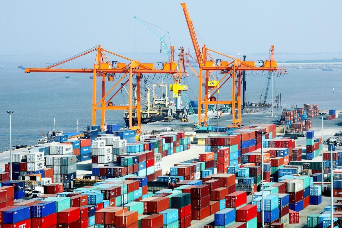 Dịch vụ hỗ trợ xin giấy phép nhập khẩu nhanh chóng – uy tín