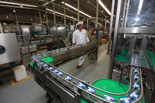 Xin giấy phép an toàn vệ sinh thực phẩm cho nhà máy chế biến sữa